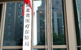 湖北省医疗保障局挂牌  副省长杨云彦出席挂牌仪式