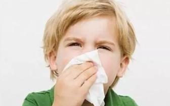 换季鼻炎患儿明显增加 5岁男童反复流鼻涕却当感冒