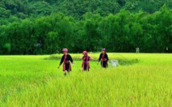 海南省政协人口资源环境考察组到琼中县调研