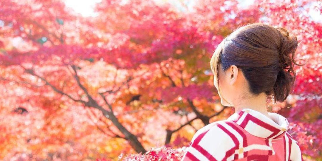 日本红叶哪里看?九州福冈赏秋景!