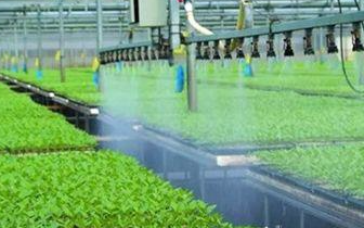 唐山新增19家省级农业小巨人企业
