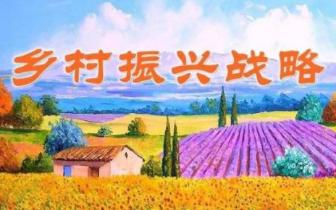 薛明耀参加全市乡村振兴战略规划编制工作推进会