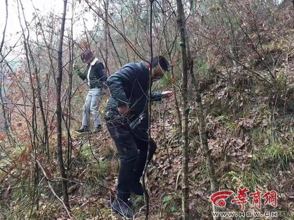 陕西杀夫焚尸案嫌犯落网:曾遭家庭暴力有作风问题