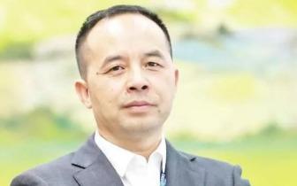 厦门二五八网络科技集团股份有限公司联合创始人、董事