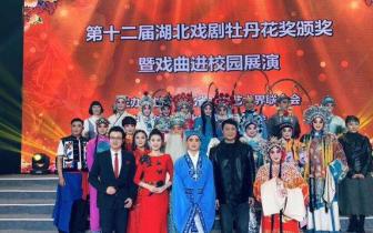 真棒!这两个潜江人荣获第十二届湖北戏剧牡丹花奖