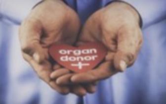 我市今年完成器官捐献9例挽救27名患者生命