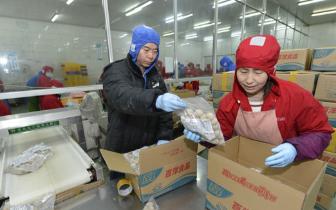 """福州定西东西部扶贫协作开启""""消费+产业""""扶贫新模式"""