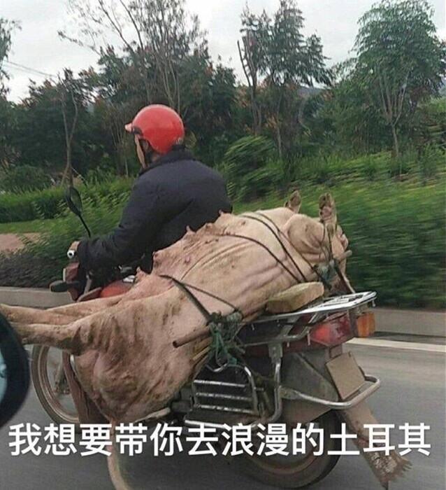 轻松一刻:这一次!中国男人终于站上鄙视链顶端!