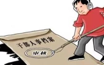 孝南集中开展干部人事档案专项审核