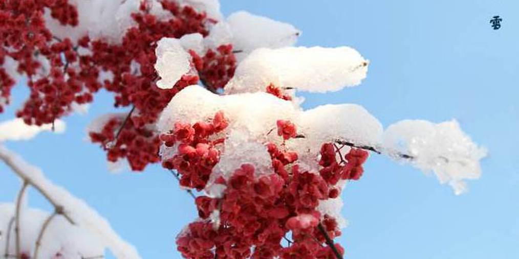 带你看遍今冬第一场雪