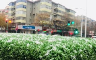三门峡2018初冬第一场雪来了!