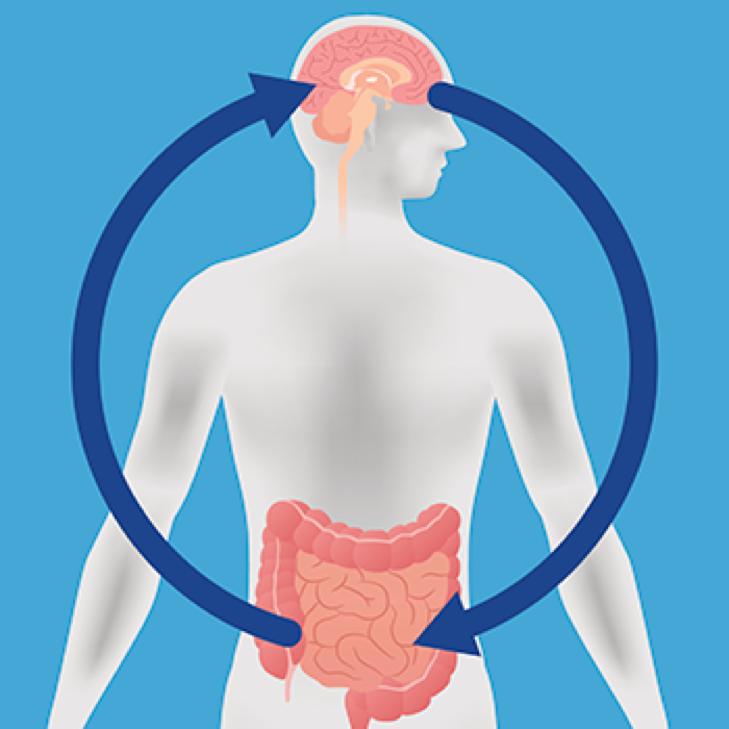 肠道细菌可以塑造情绪和行为