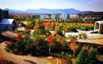"""15所学校获青岛市中小学""""绿色(节约型)学校""""称号"""