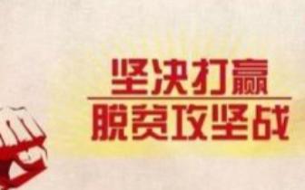 """红毛镇罗坎村脱贫之星王朝参拔穷根的""""秘方"""""""