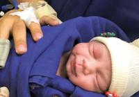 去年首个遗体子宫移植孕育的婴儿诞生,至今健康