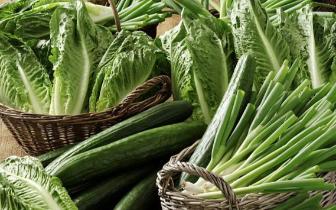 多吃绿叶菜好处多 可以让你的眼睛老得慢