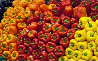 加拿大明年果蔬或涨价 华裔拟南下美国买菜省开销