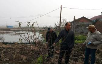潜江市白鹭湖管理区开展林业技术培训活动