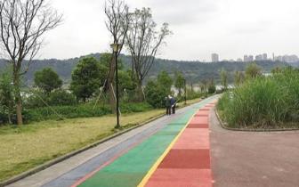 巴滨路建成重庆市首条滨江自行车道 本周六开放