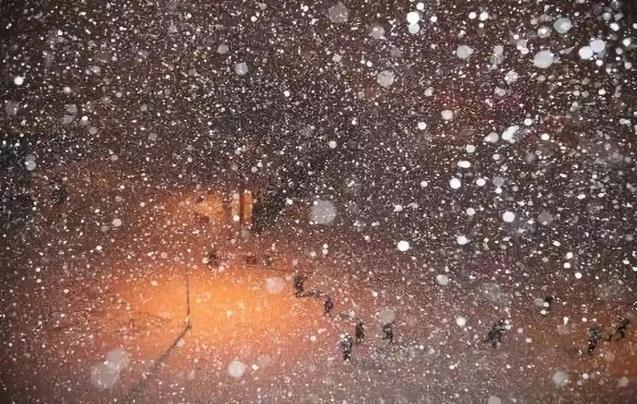 烟台|初雪纷纷 携美而来