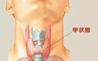 """被""""甲状腺结节""""吓过的人 都该学会这种自检方法"""