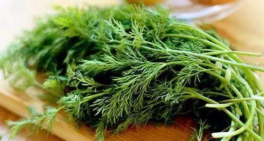 冬天最厉害的绿叶菜!驱寒降脂 还是胃病克星
