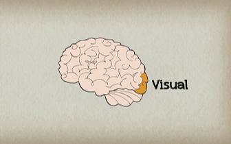 脑子是否聪明一个动作就知道?反正我不信