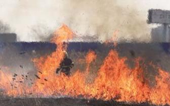 倾倒未燃尽的炉灰引燃荒草 1人被罚款500元