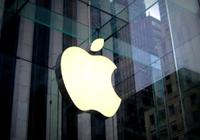 苹果收购创业公司Platoon:帮助更多艺人成名