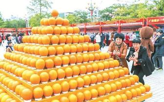 平远县第十四届脐橙文化旅游节侧记