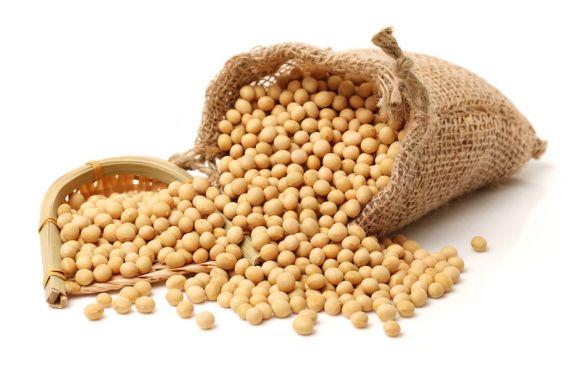 中国大豆进口量创6年来同期最低值3000多万吨大豆需求缺口如何补?