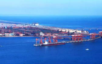 25吨!曹妃甸港区首批海运进口肉入境