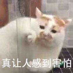 "【CC直播年度专访】""差生""的逆袭:80后新主播如飞"