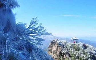 广东下雪!接下来天气怎样呢?冬季养生指南收好