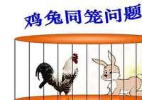 鸡兔为何装一块儿?小学生作打油诗吐槽数学题