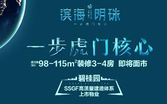 【滨海明珠】大虎门交通有多方便,看完就知道了!