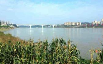 12月16日起泸州最高气温将升至15°C左右