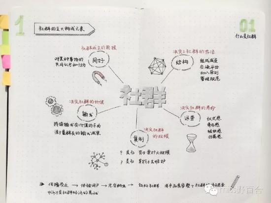 百合老师曾经用手绘笔记的形式,将自己看的书做成手绘笔记.