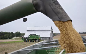 美国推迟农户援助付款 寄望中国会恢复买美国大豆
