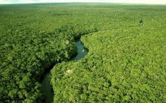 国际商界精英海南自贸区(港)热带雨林挑战赛在琼中探点