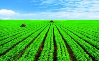 大同市绿色有机农产品畅销全国绿博会