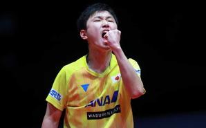 总决赛张本智和4-1胜林高远夺冠