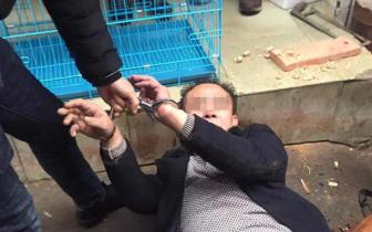 警察抓扒制服嫌犯 拿出手机报告时接到奶奶去世消