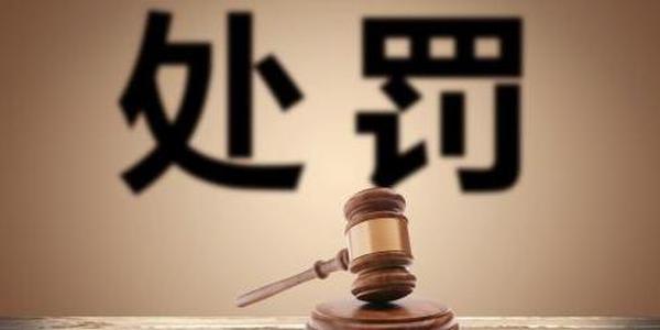新华汇嘉及总经理操纵股票被罚