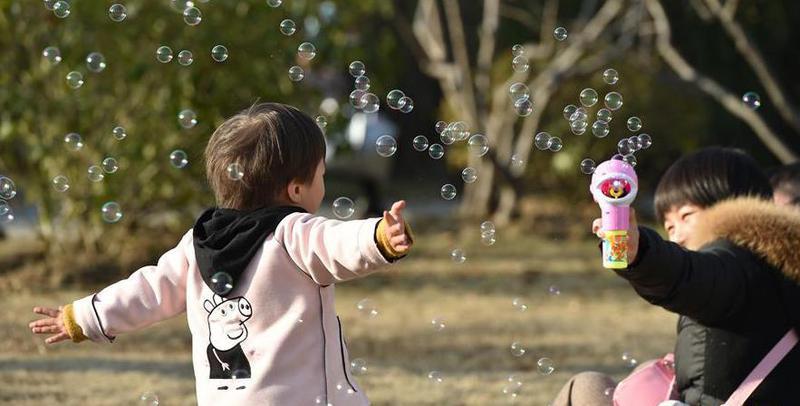 周末市民杏花公园内享受冬日暖阳