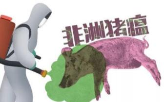 巴中发现非洲猪瘟 看看通川、达川腊肉该怎样进城