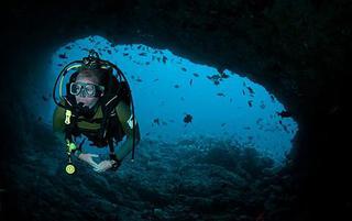 阿森松岛潜水