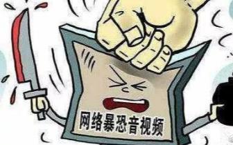 梁园区 商丘一男子上传暴恐音视频被拘留10日