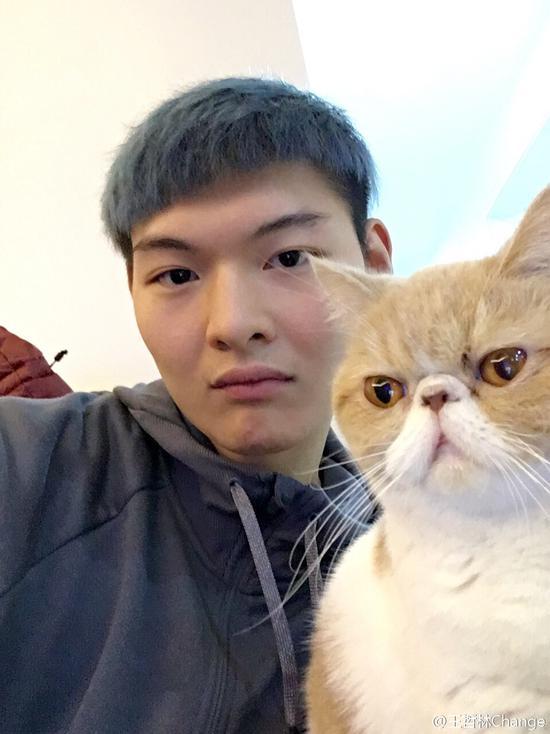 王哲林很喜欢猫
