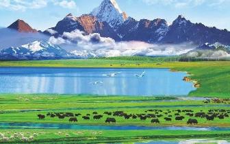 阿坝州有多美?最新全域旅游电子书正式上线,赶紧收藏!